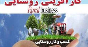 کسب و کار روستایی ، مشاغل زنان روستایی ، کارآفرینی روستایی، مشاغل روستایی