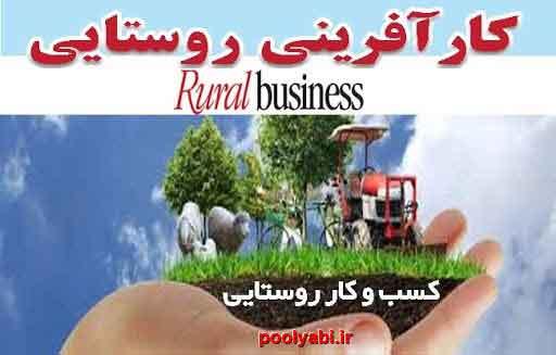 کسب و کار روستایی ، مشاغل زنان روستایی ، کارآفرینی روستایی، مشاغل روستا