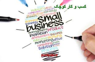 کسب و کار کوچک ، مشاغل کوچک ، معرفی کسب و کار نوپا
